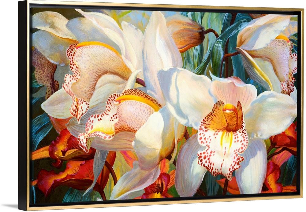 Orchid Fandango